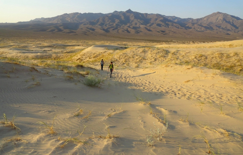 Imagen de expansivo de Mojave National Preserve