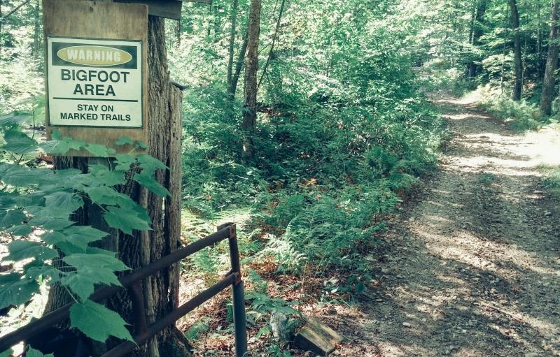"""Señal de advertencia en un bosque que dice """"BIGFOOT AREA"""""""