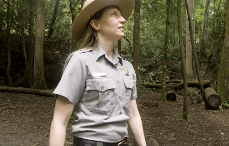 A ranger in uniform walks in a wood