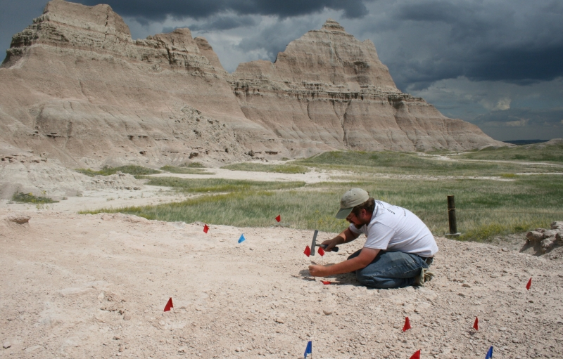 Paleontologist at the Saber excavation site at Badlands National Park