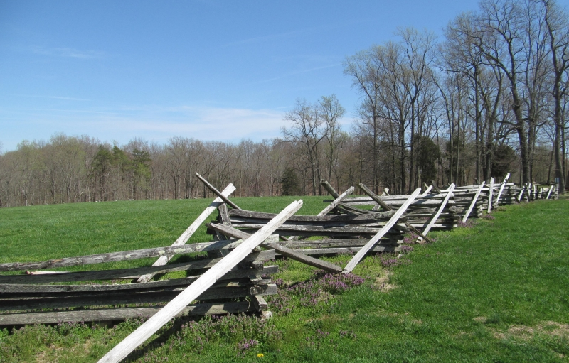 A wooden fence zig-zags across a green field. In the distance, a dense forest of trees