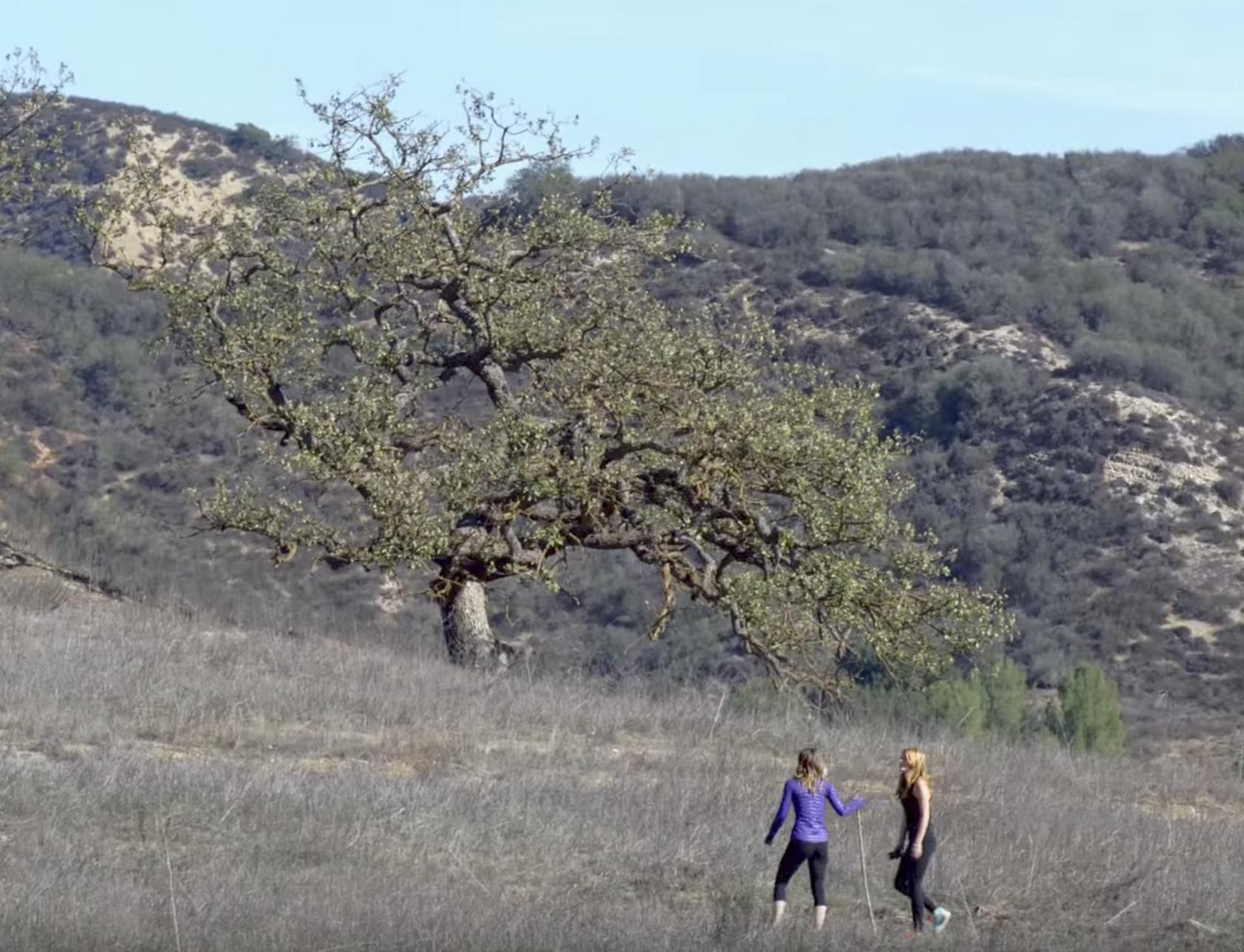 Bella Thorne y amigo caminando por el área de recreación nacional de las montañas de Santa Mónica