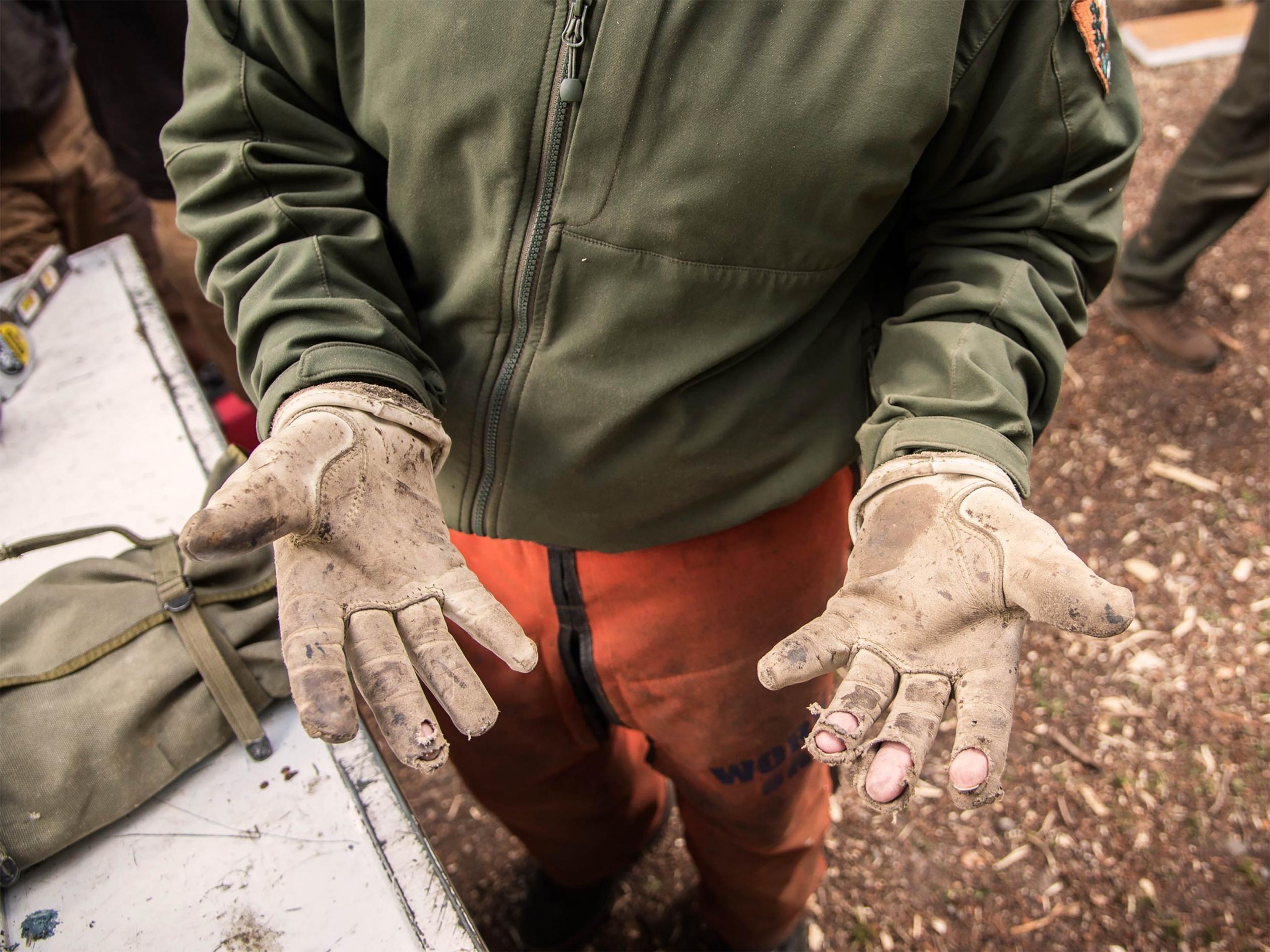 voluntarios parque con los guantes gastados