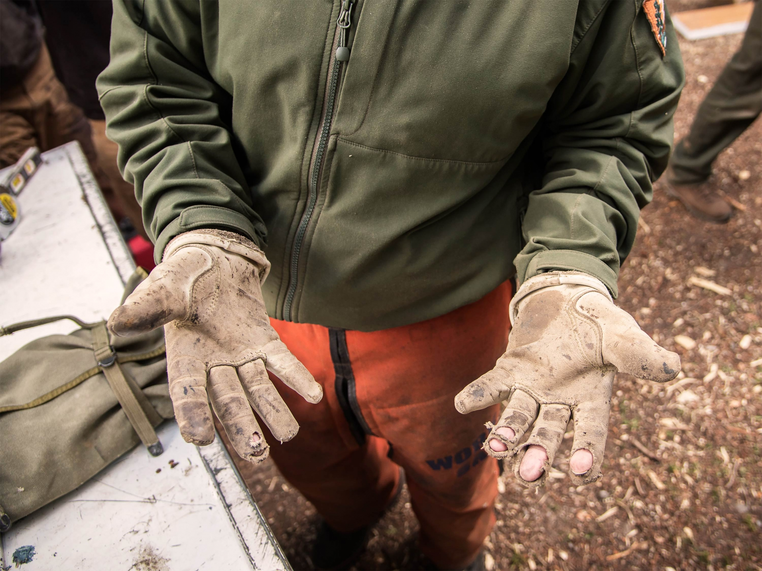 Park volunteer with worn gloves