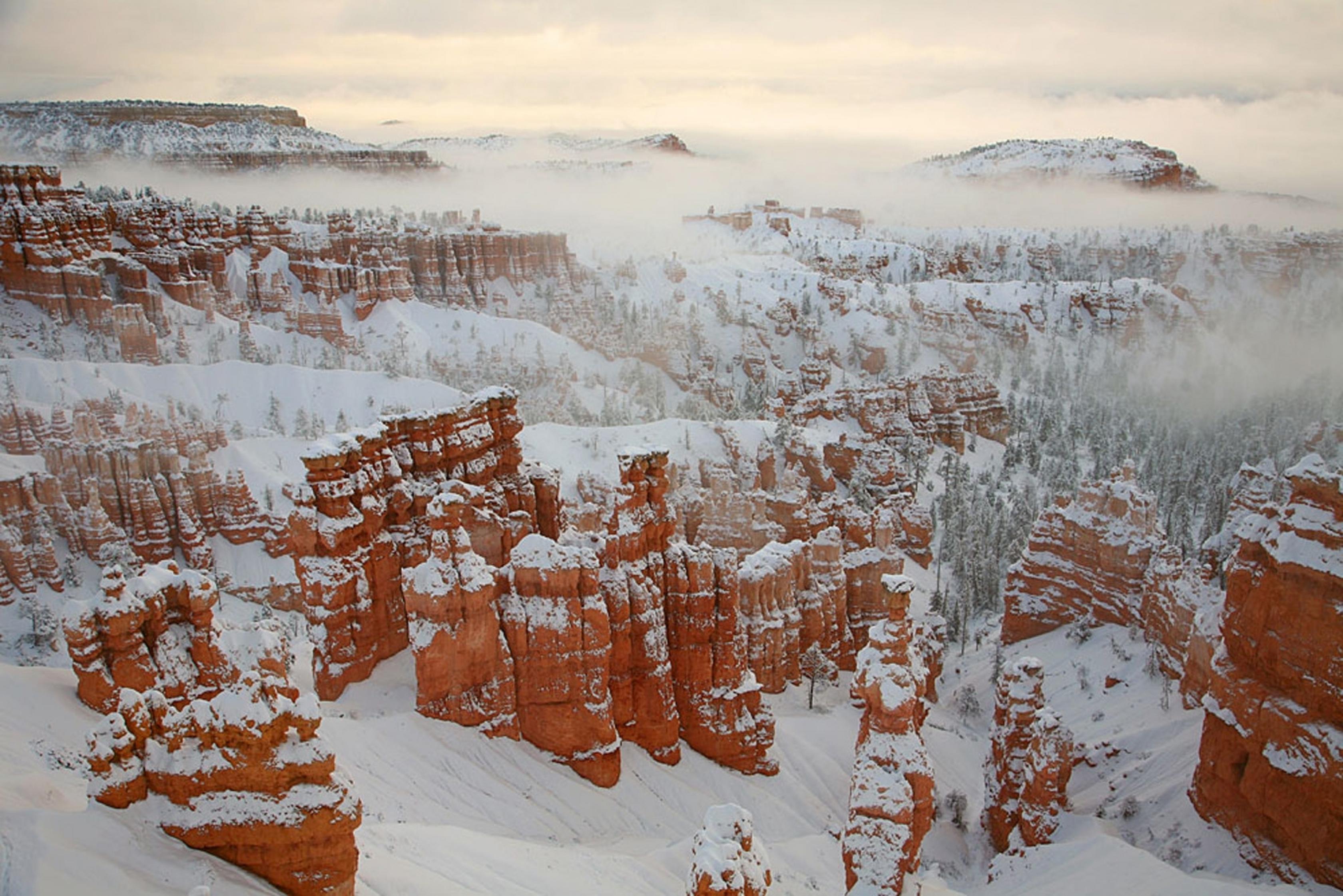 Hoodoos rojos cubiertos de nieve y niebla en el Parque Nacional Bryce Canyon