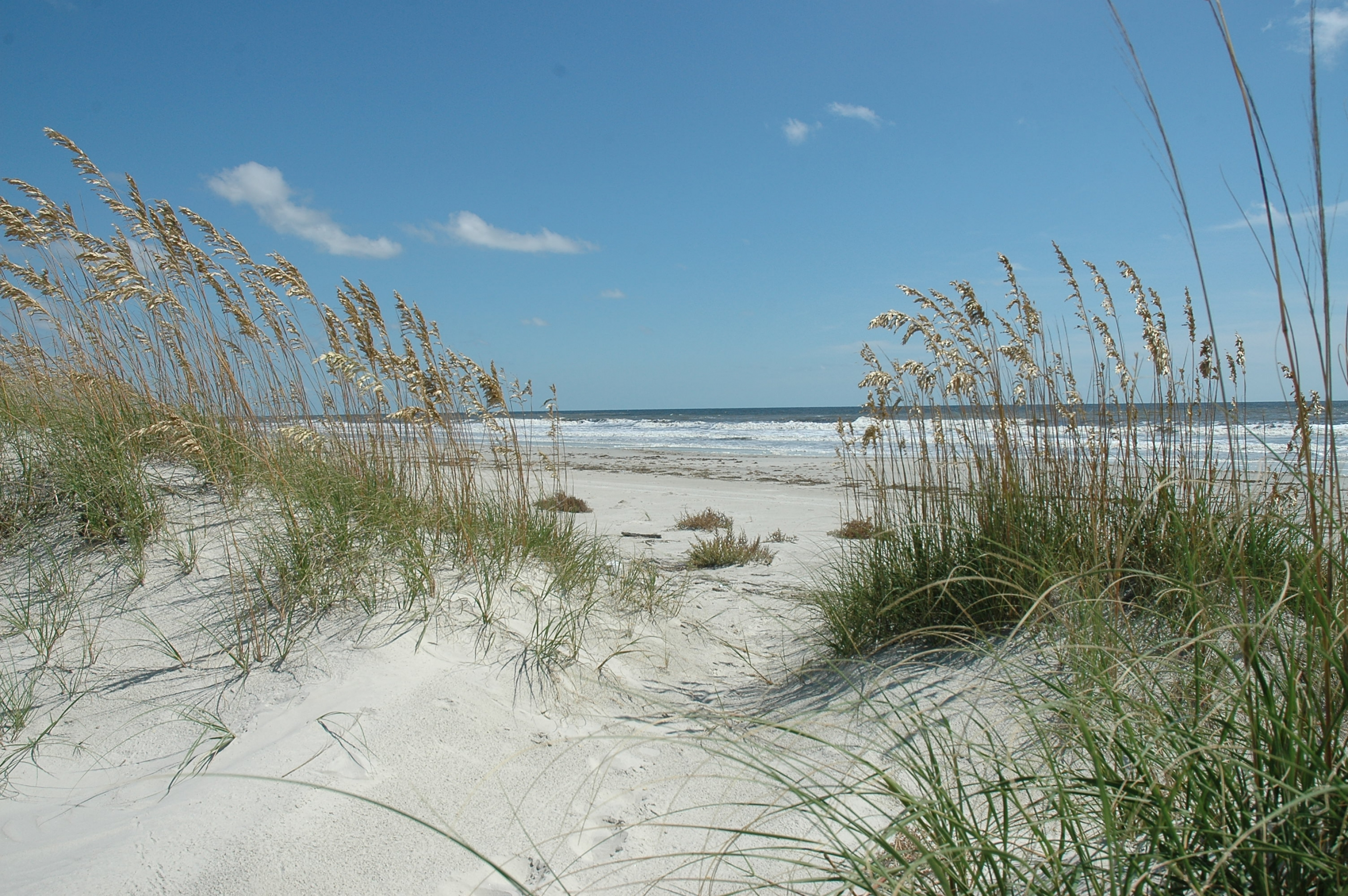 A sandy beach at Cumberland National Seashore.
