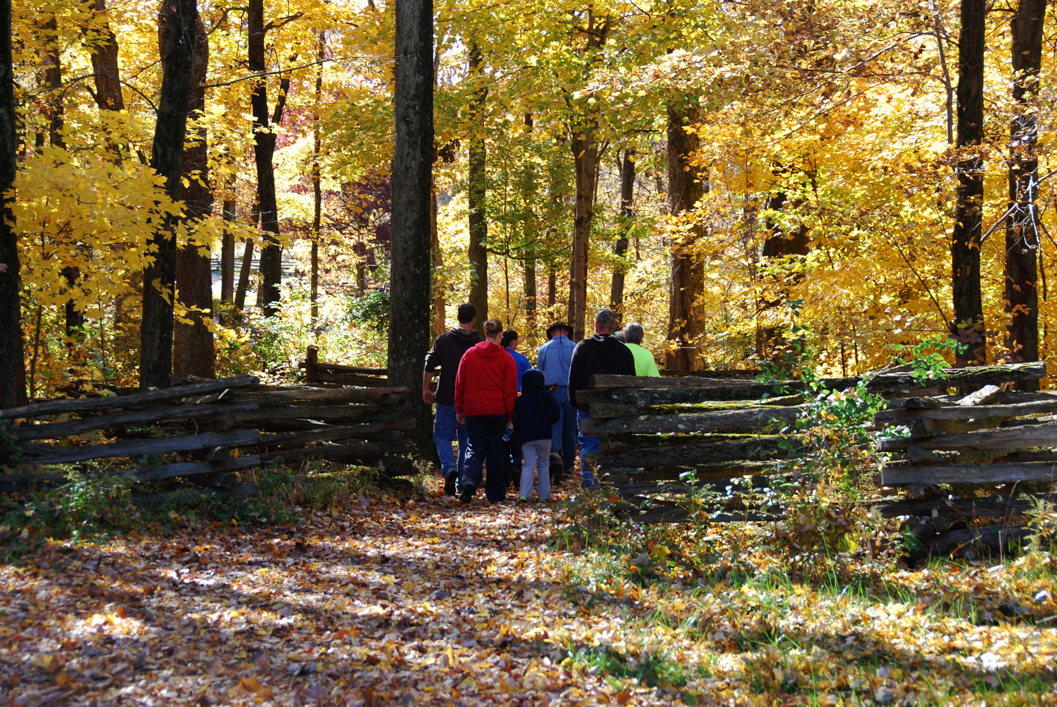 A group makes their way through an old fence at Lincoln Boyhood's home.