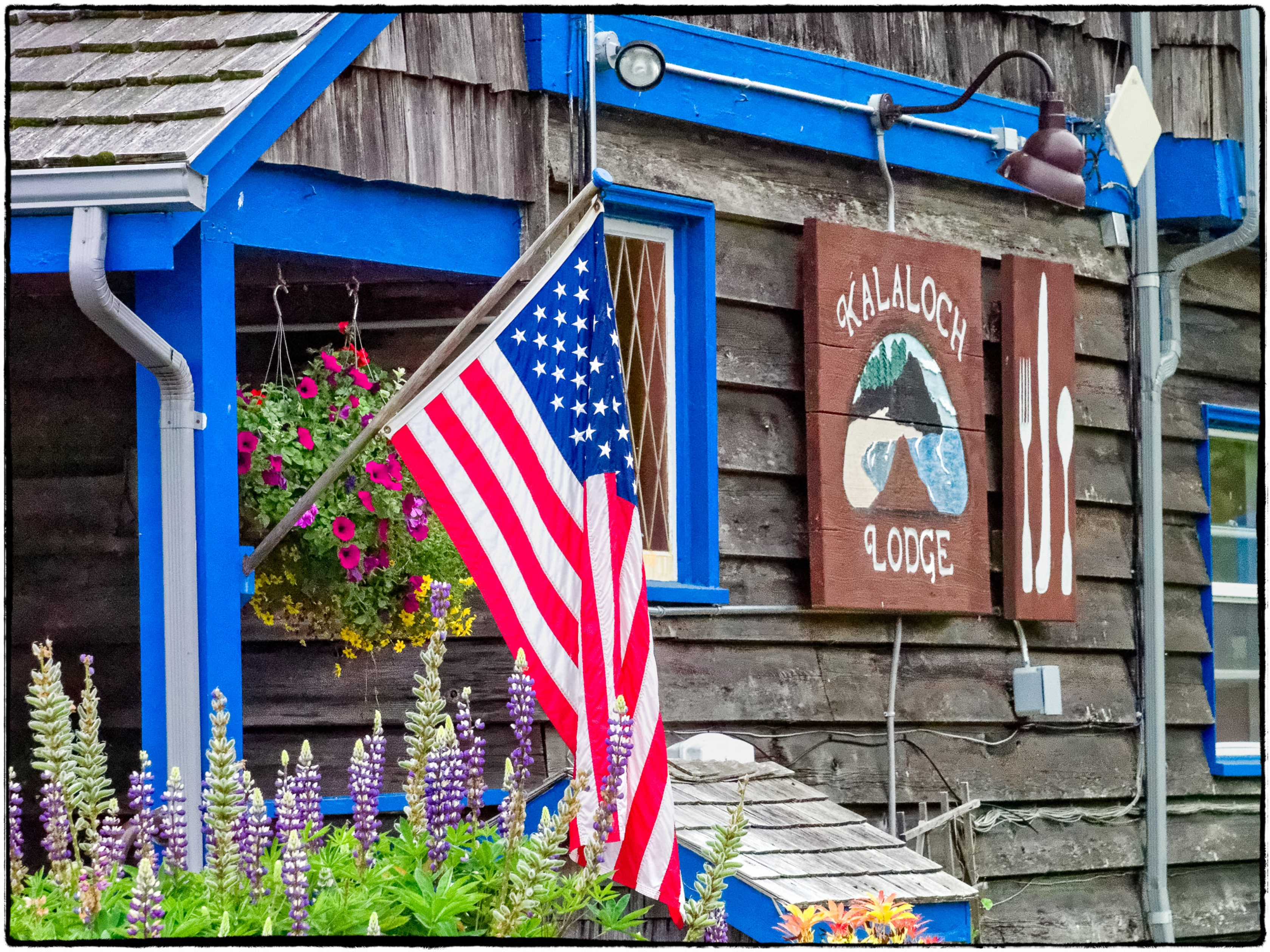 Kalaloch Lodge in Olympic National Park is a great option for food.