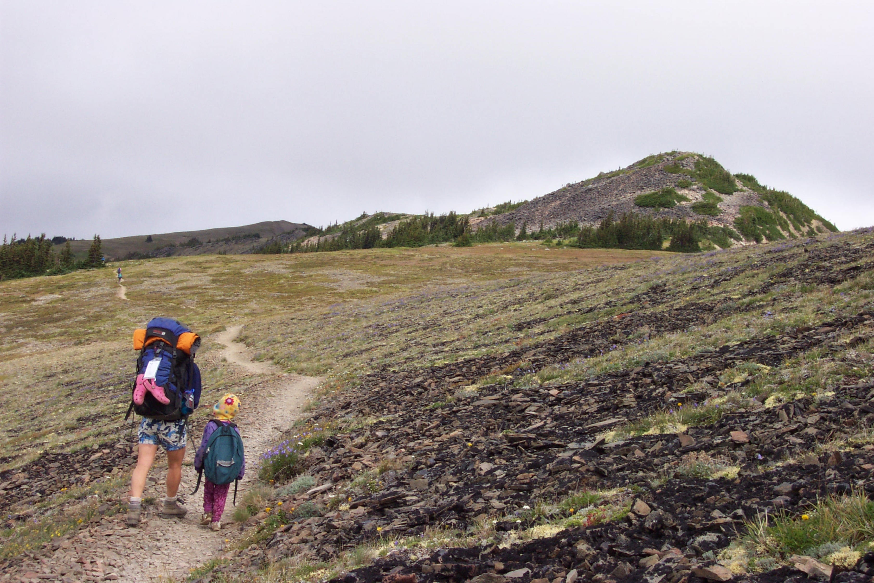 Child and adult backpacking on a trail at Olympic National Park