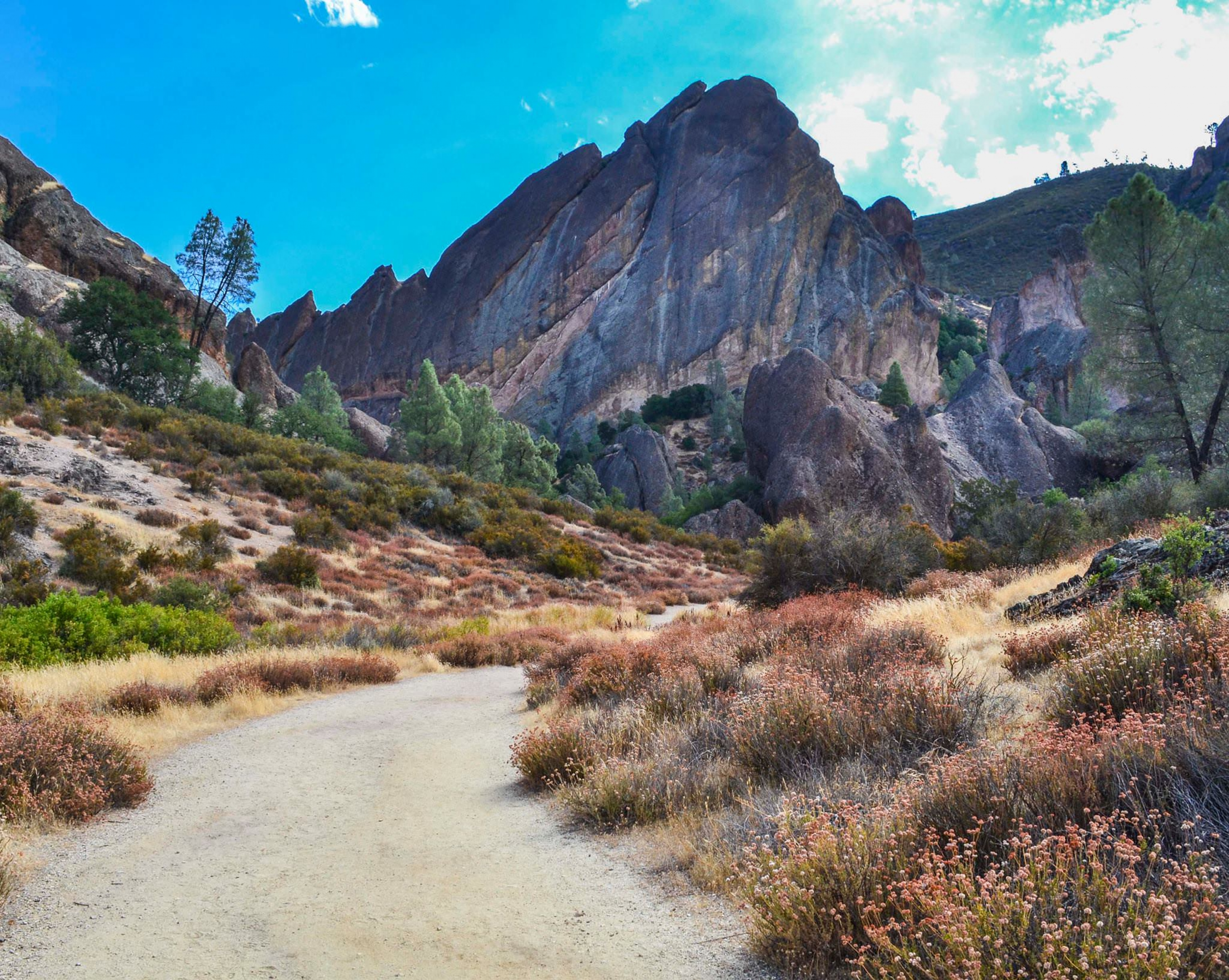 A landscape at Pinnacles National Park, formally a National Monument.