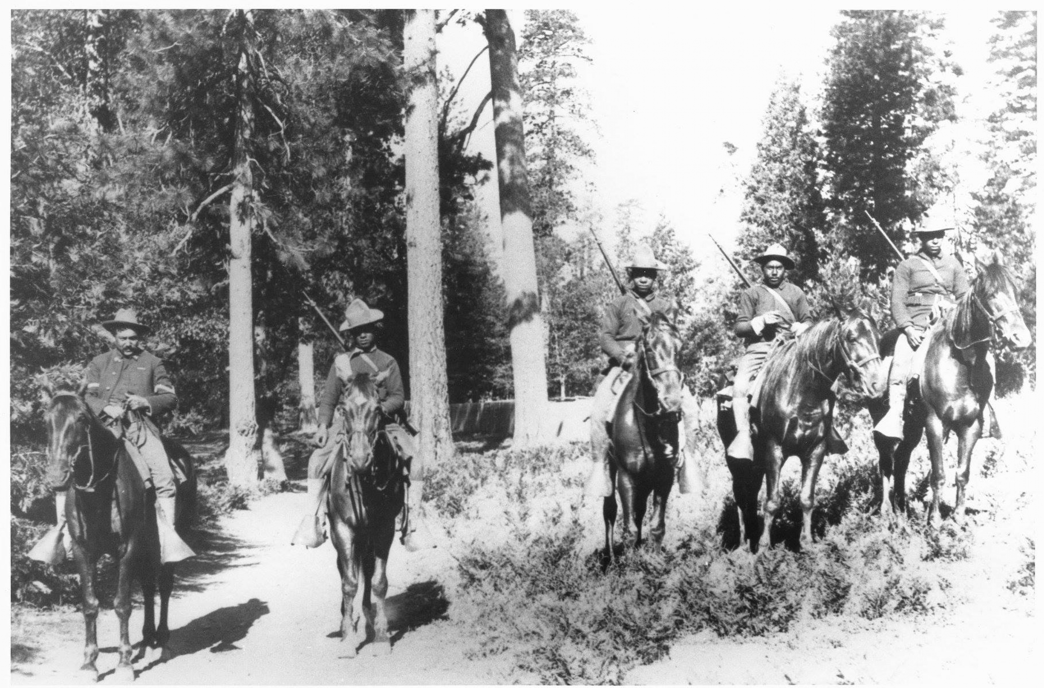 Historic black and white photo of the 24th Infantry Buffalo Soldiers on horseback patrolling in the woods of Yosemite National Park