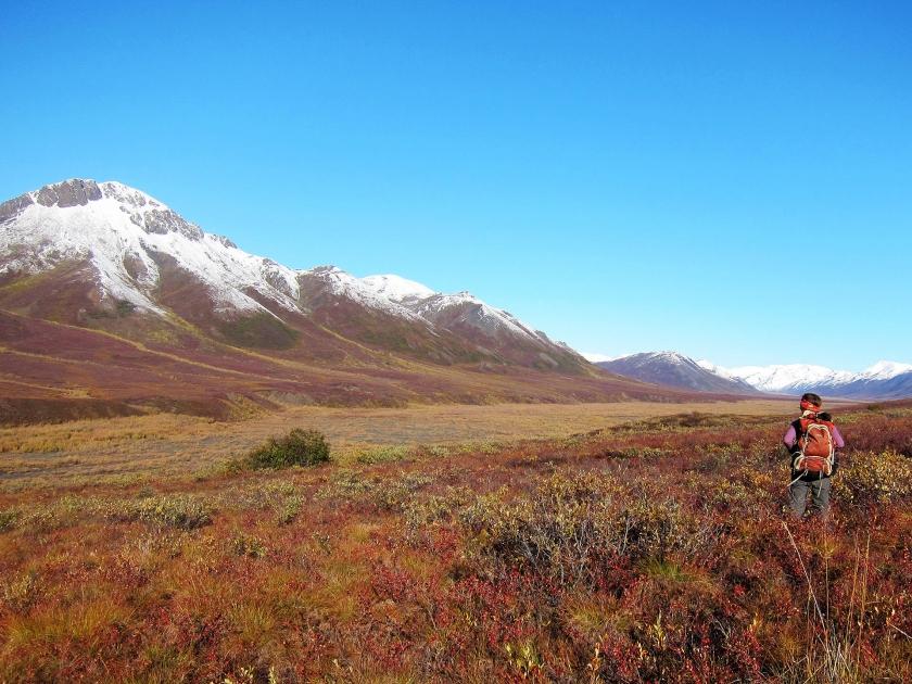 Imagen de excursionista cerca de las montañas cubiertas de nieve en Noatak National Preserve