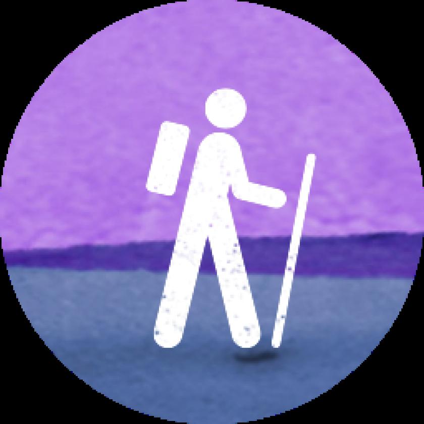 Visit Icon