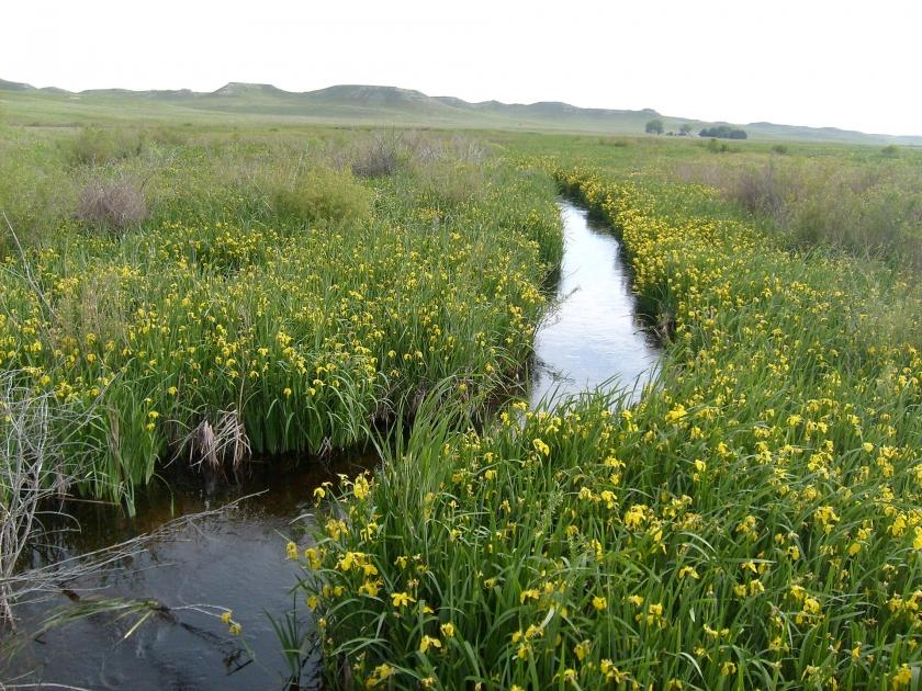 Imagen de Parque y extensión vía acuática en el Parque Nacional Niobara